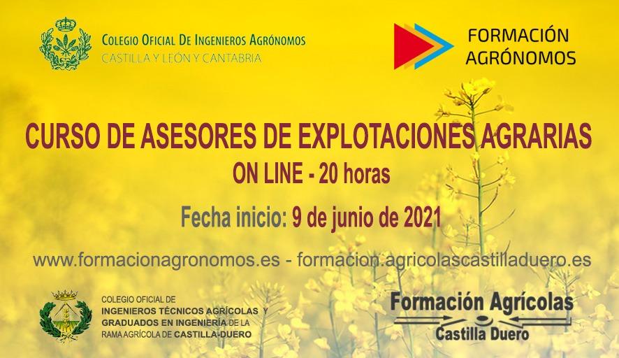 curso-asesores-2021