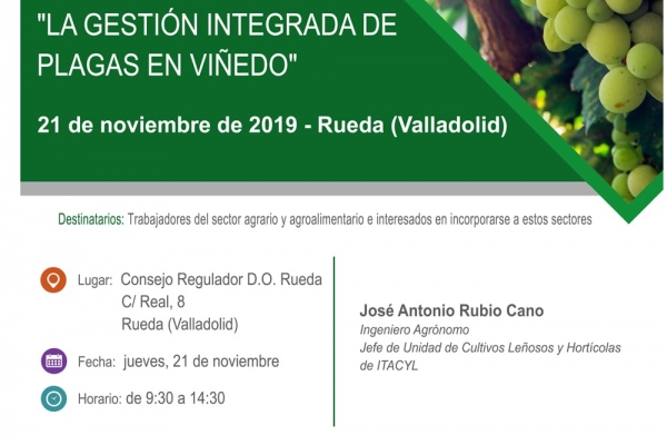 Curso en D.O Rueda